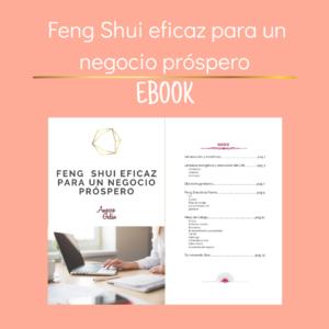 FengShui eficaz para un negocio próspero